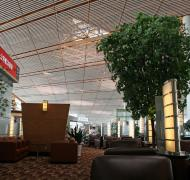 Air China Business Class Lounge	(Terminal 2 International)